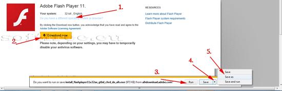 Tutorial Adobe Flash Player descărcarea programului