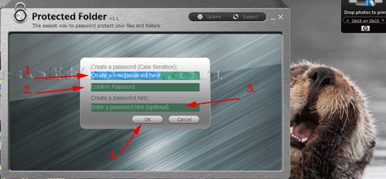 Tutorial IOBit Password Folder prima logare